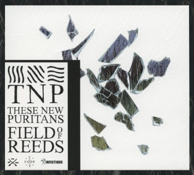 Scanned 'Field of Reeds' CD front against black plastic.